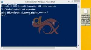 Appx.setup.dlfox. (1)
